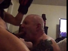 Boxer Uses His Tatted Married Bitch Bear
