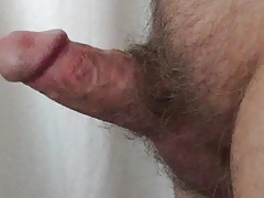 small cock erection