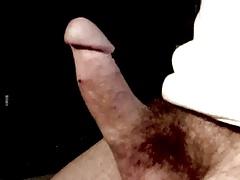 Hard & hairy cock