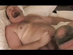 Bear fucks chubby d4ddy