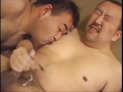 Asian bear 029