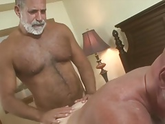 daddy bears hot scene