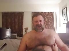sucking great bear