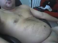Hot bear 1517