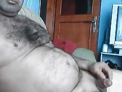 Husky handsome bear 40318